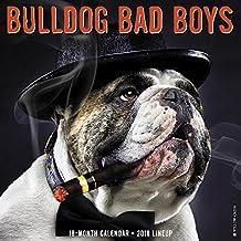 Bulldog Bad Boys 2018 Calendar