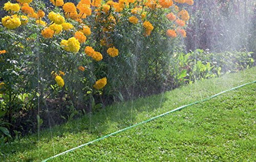 Zoom IMG-1 gardena 1998 20 tubo irrigatore