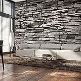 murando - Fototapete 400x280 cm - Vlies Tapete - Moderne Wanddeko - Design Tapete - Wandtapete - Wand Dekoration - Steinmauer Steine Stein Steinoptik 3D Mauer Steinwand f-B-0043-a-a