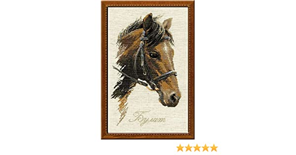 9.75 by 15.75-Inch Riolis R826 Bulat Counted Cross Stitch Kit