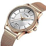 CIVO Damen Uhren mit Edelstahl Mesh Armband Wasserdicht Datum Kalender Luxus Mode Armbanduhr mit Zifferblatt Elegant Geschäfts Beiläufig Analog Quarz Uhren für Damen (Silbern)
