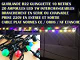 Guirlande Lumineuse extérieure 10m + 20 ampoules LED B22 couleurs chainable.