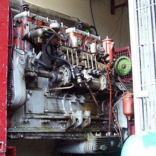Diesel Generator - Single - Diesel-generatoren