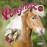 Ponyherz 2019 Wandkalender