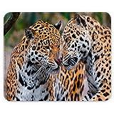 Wilde Tiere 10097, Leopard, Designer Leder Mousepad Unterlage Mauspad Maus-Pad Stark Anti Rutsch Unterseite für Optimalen Halt mit Lebhaftes Motiv Kompatibel mit Apple Magic Maus. Ideal für Gamer und für Grafikdesigner
