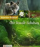 Der Urwald Sababurg: Naturerlebnis Nordhessen (Farbbildband) -
