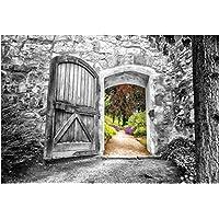 Lienzo puerta 78x 118cm–blanco y negro