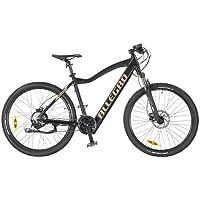Allegro Invisible E-Bike Mountainbike Herren 27,5 Zoll, E-MTB, Elektro Mountenbike E-Bike, Schwarz