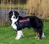 Trixie 30103 Rucksack für Hunde