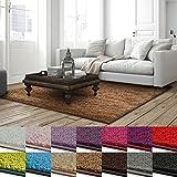 casa pura Shaggy Teppich Barcelona | weicher Hochflor Teppich für Wohnzimmer, Schlafzimmer, Kinderzimmer | GUT-Siegel + Blauer Engel Größen | 66x130 cm | Hellbraun