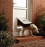PetSafe Staywell Porte pour animaux d'origine à 2 positions, Grande, Blanc