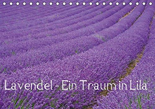 Lavendel - Ein Traum in Lila (Tischkalender 2016 DIN A5 quer): Genießen Sie ein ganzes Jahr blühenden Lavendel und erfreuen Sie sich an der intensiven ... (Monatskalender, 14 Seiten) (CALVENDO Natur) - Blühende Kräuter Duft