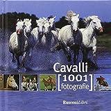 Cavalli usato  Spedito ovunque in Italia