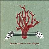 Songtexte von Burning Hearts - Aboa Sleeping