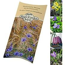 Saatgut-Set: 'Frühlingsblüher zum Verwildern' 4 besondere Blumensorten als Samen für die Aussaat in schöner Geschenkbox