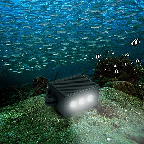 LWL House Luz de Video LED Impermeable con Adaptador y Tornillo for GoPro HERO7 / 6/5/5 Session / 4 Session / 4/3 + / 3/2/1, Xiaoyi y Otras cámaras de acción (Negro) (Color : Black)