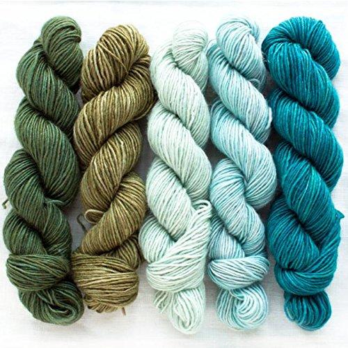 Manos del Uruguay Silk Blend Fino Minis Set Fb. Flora, 100g (5x20g) Merino Extrafine + Seide, handgefärbt mit wunderschönem Farbverlauf, Wolle mit Seide zum Stricken -