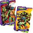 Teenage Mutant Ninja Turtles Board Book Set (2 Shaped Board Books)