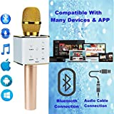 Upgraded Wireless Karaoke Microphone Bluetooth Speaker, TechStone Portable 3-in-1 Handled Multi-function Bluetooth Microphone and Built-in Speaker for Mobile Phone, PC and Smart Devices (Gold) from TechStone