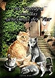 Mr. Pattapu und das Geheimnis der Vier: Katzenkrimi