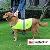 Salzmann Reflective Dog Jacket made with 3M Scotchlite, High Visibility Coat for All-Sized Dogs with straps, Size XS, 2 per pack