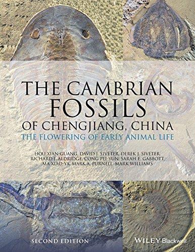 CAMBRIAN FOSSILS OF CHENGJIANG por Hou Xian-Guang