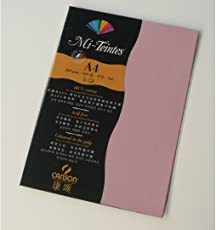 Canson Mi-Teintes 160 GSM A4 Pack of 5 Honeycomb & Fine Grain Sheets - Orchid