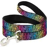 Buckle Down dl-w31828Zebra Rainbow Ombre Pet Leine, 4'lang–2,5cm breit