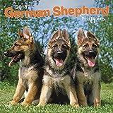 German Shepherd Puppies - Deutsche Schäferhunde - Welpen 2018-18-Monatskalender mit freier DogDays-App: Original BrownTrout-Kalender [Mehrsprachig] [Kalender] (Wall-Kalender)