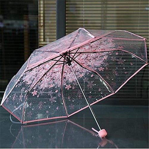 Gespout 1PC Falten Regenschirm Reise Regen Modisch Transparent Umbrella Erfrischend Rose