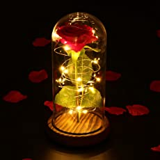 LEDMOMO Red Silk Rose and LED Light with Fallen Petals in a Glass Dome on A Wooden Base Gift for Valentine's Day Anniversary Birthday Wedding (Single Rose)