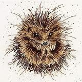 Awakening Bothy Threads Kreuzstich Set von Hannah Dale von Wrendale Designs
