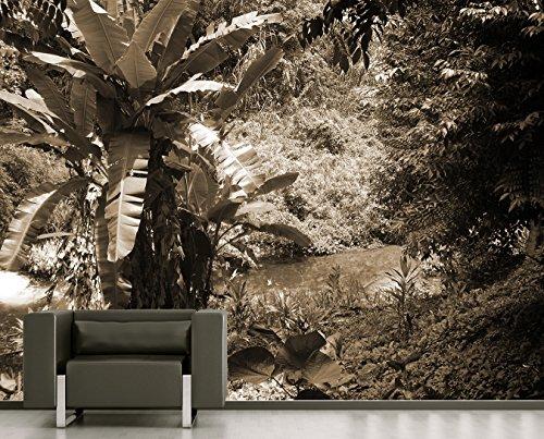 Bilderdepot24 Vlies Fototapete - Bananenbaum im Dschungel - sephia - Sepia - 180x150 cm - mit Kleister – Poster – Foto auf Tapete – Wandbild – Wandtapete – Vliestapete