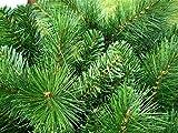 kuenstlicher Weihnachtsbaum – 150cm – Klappsystem – Aufbau kinderleicht - 5