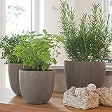Varia Living Übertopf aus Polystone | Leichte Steinoptik | Für Blumen und Gemüse | Hochwertig | Pflegeleicht | Grau/Silber | Leichter als Steintöpfe (H 15 cm/Ø 17 cm)