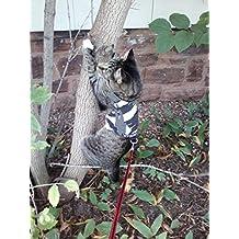 Arnés para gato adulto Mynwood a prueba de escapes.