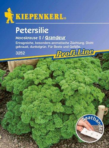 Sperli 3252 Gemüsesamen Petersilie Mooskrause 2 Grandeur, grün