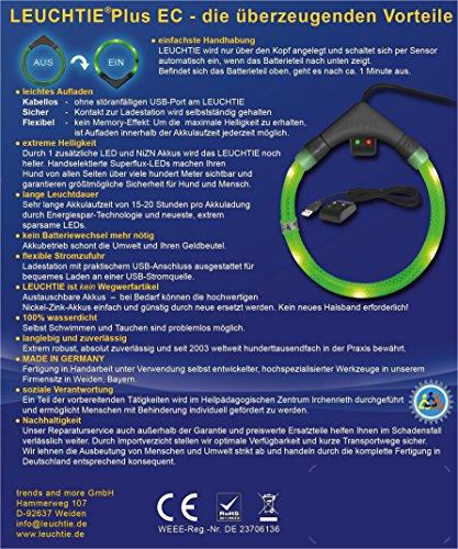 LED Leuchthalsband LEUCHTIE Plus Easy Charge türkis Größe 50 aufladbar - 6