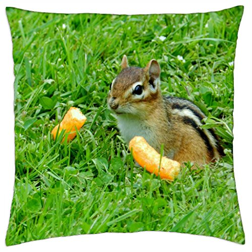time-for-cheetos-throw-pillow-cover-case-18-x-18