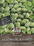 Sperli Gemüsesamen Gurken Mexikanische Minigurke'Sandia', grün