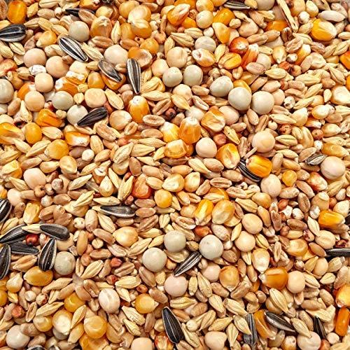 Supravit Taubenfutter Basis 5 kg - preisgünstiges Allroundfutter für Tauben