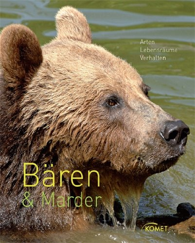 Bären & Marder: Arten, Lebensräume, Verhalten