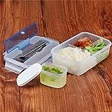 A-goo Lunchbox Praktische Brotdose Bento Box - Lunch Box mit Trennwand - Perfekt für Büro - Schule - Kinder Garten