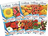 Garden Care Flowers Seeds For Summer Season (Pack Of 10)