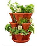 VGreen 3 Pot Brown Planter (3 Pot + 1 Tray)