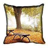 meSleep Nature 60-101 Digitally Printed Cushion Cover (16x16) best price on Amazon @ Rs. 175