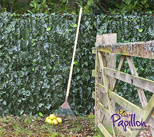 """Artificial Ivy Leaf Screening Hedge 3m x 1m (9ft 10"""" x 3ft 3"""") Fencing Plastic Privacy Garden Screen Rolls by Papillon Test"""