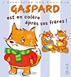 """Afficher """"Gaspard est en colère contre ses frères !"""""""