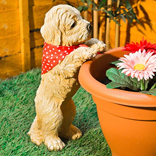 Peeping Puppy Garden Ornament Do...