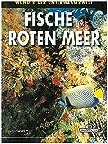 Rotes Meer: Wunder der Wasserwelt (PiBoox Maris)